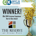 Ellis 2018 Customer Experience Best in Class Award!