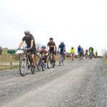 Harris-Roubaix