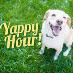 Yappy Hour & Open House